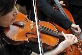 フリー素材 バイオリン[1].png
