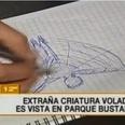 南米チリに不気味な翼竜型UMAが出現か!?「教会の塔で犬を食べていた」【衝撃画像】