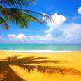 ジャニーズ元メンバーの立身出世物語~ハワイで実業家として成功した男の半生